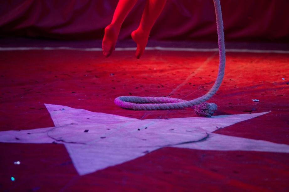 razgova_circus01